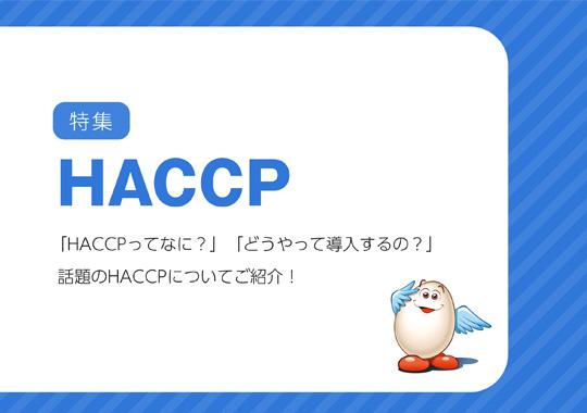 お役立ちe-Book「HACCP」